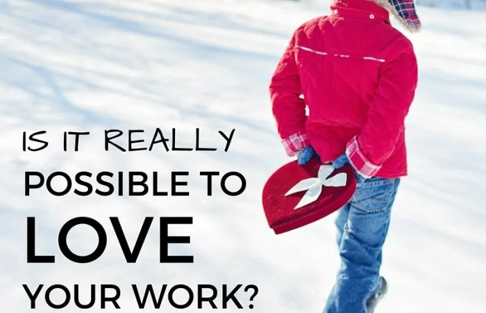 Is It Really Possible To Love Your Work?