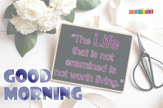 happy life good morning quotes