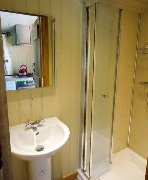 Silver Dollar Interior - Sink and Shower