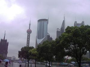 上海颱風③上海の休日総まくり…そこね: Wisteria Shade