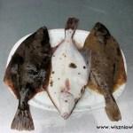 Jak nad morzem najeść się ryb i nie zbankrutować?