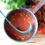 Lekka zupa gulaszowa z indyka