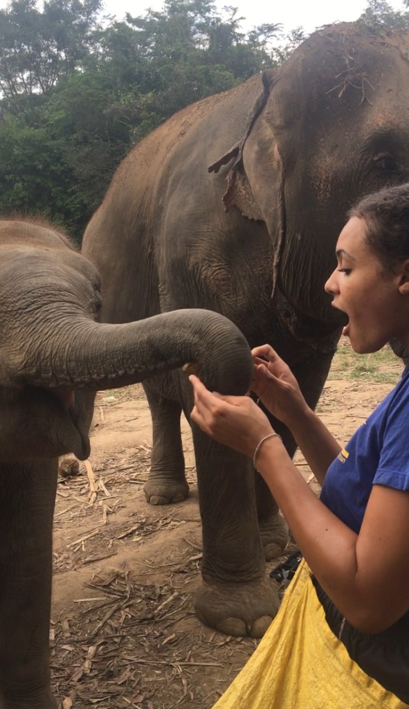 Feeding a baby elephant at Chiang Mai Mountain Sanctuary in Chiang Mai, Thailand