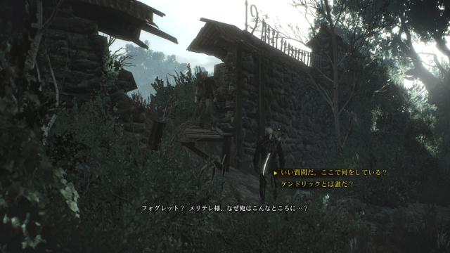 ウィッチャー3攻略: ある結婚の風景 (DLC第1弾 無常なる心、メインクエスト)-ノヴィグラド