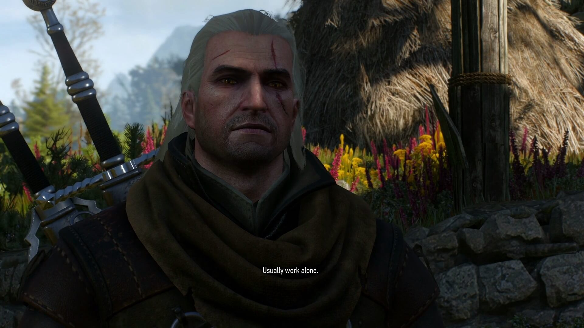 witcher 3 wild hunt quest dialogue two