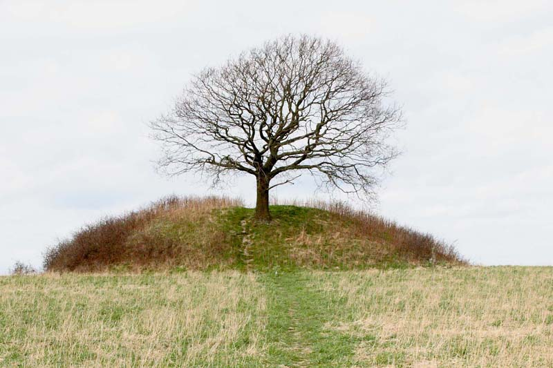 Mysselhøj, a danish gravemound from the early bronze age situated close to the danish town Roskilde.