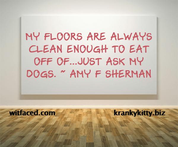 Clean floors xx