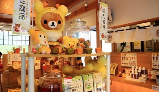 京都嵐山 りらっくま茶房 フォトギャラリー Part2