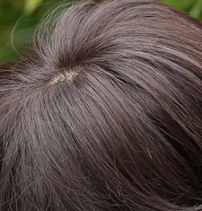 ミックス毛の女性用かつら