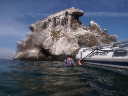 Snorkelling on Isla Isabel