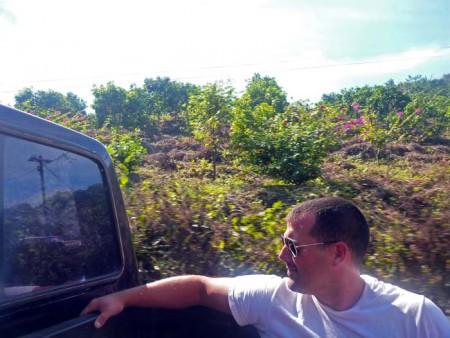 Hitch-hiking