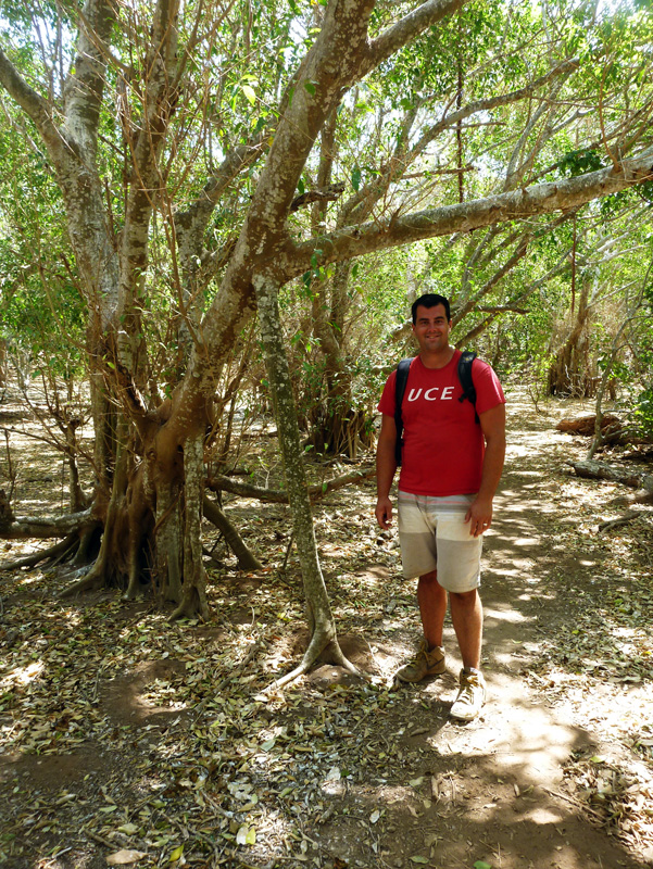 Jon in the jungles of Isla Isabela, with a tree that grew a crutch