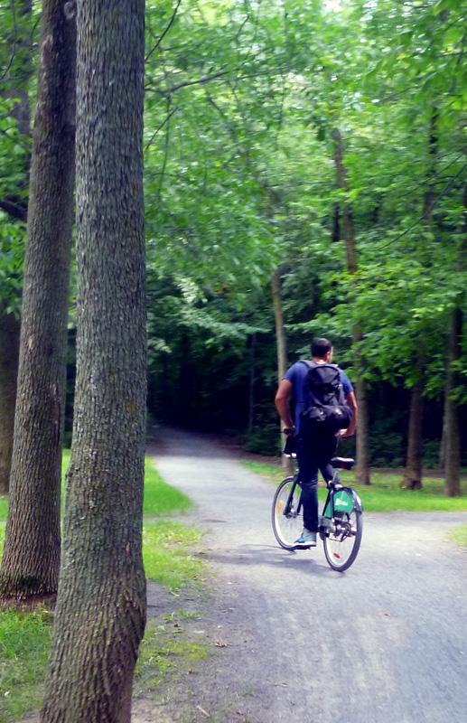 Riding Bixi bikes in Montreal