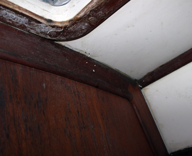 Our sailboat after 8 months stored in a marina in the tropics - moldy!