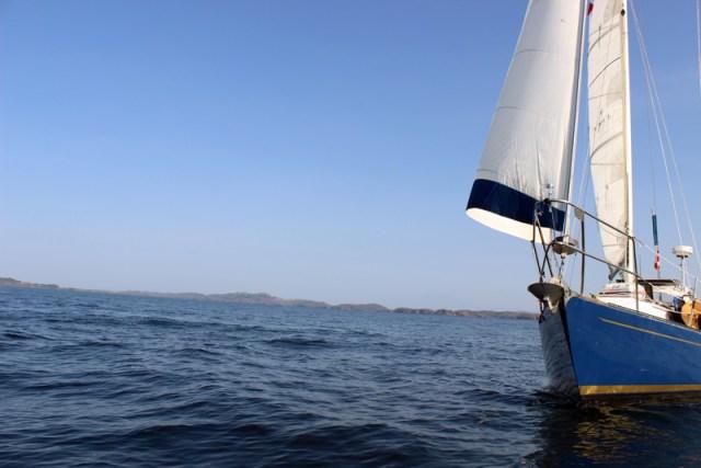 Sailboat Brio