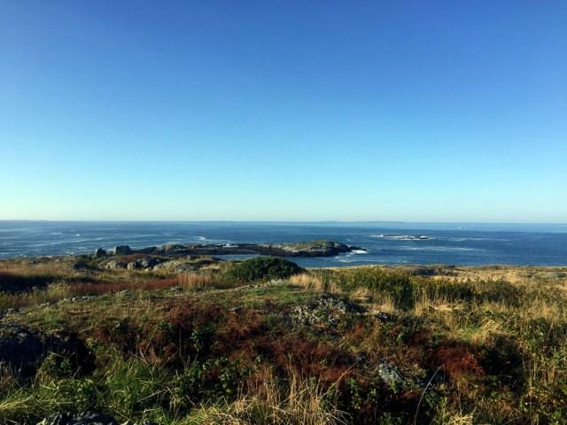 Brimstone Island, Penobscot Bay, Maine