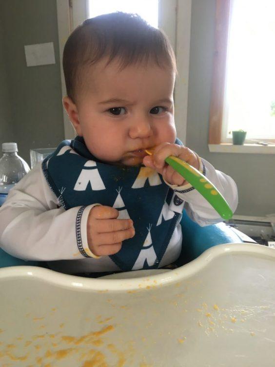 Zephyr enjoys sweet potatoes