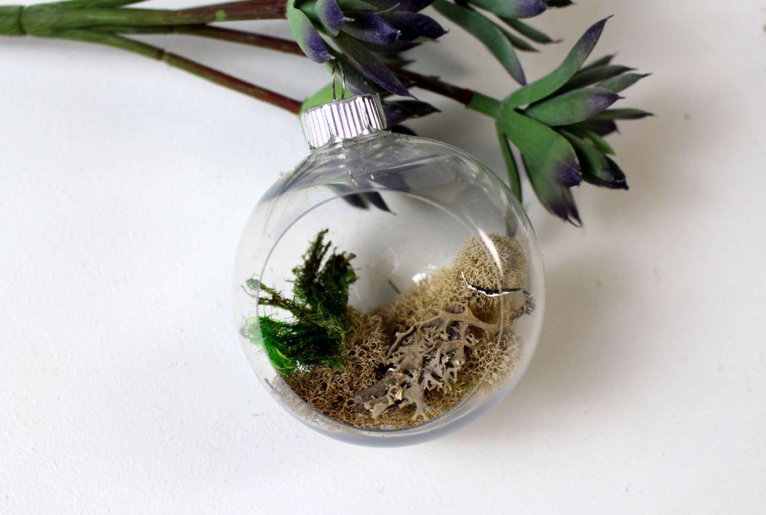 Glue moss inside an ornament before the succulent
