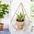 A collection of indoor plant stand ideas.