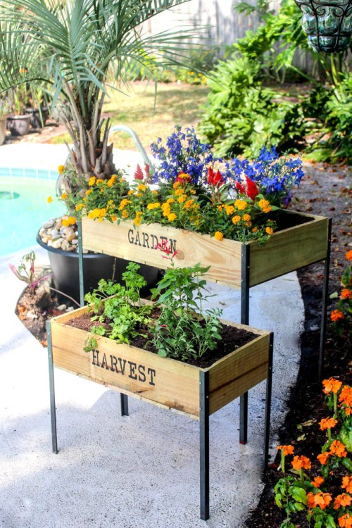 DIY Raised Garden Boxes with Organic Soil - Within the Grove