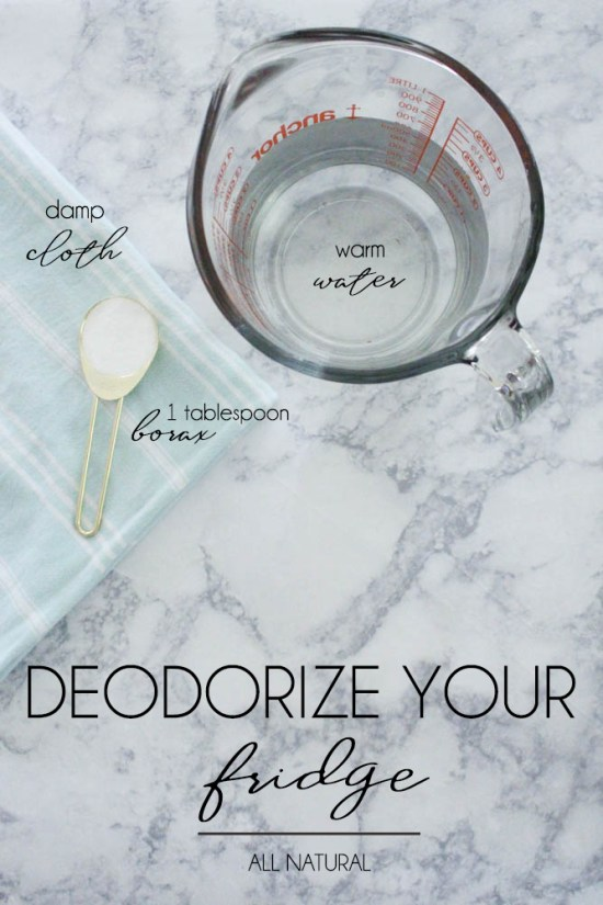 Deodorize Your Fridge with Borax - Within the Grove