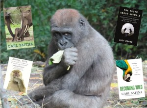 Read more about the article Animal Behavior: A Reading List