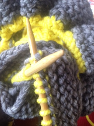 Grey and Yellow Win!