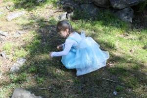 Elsa picking flowers