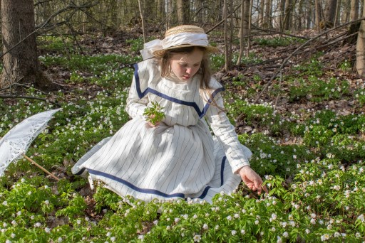 The bodice front and wood anemones.