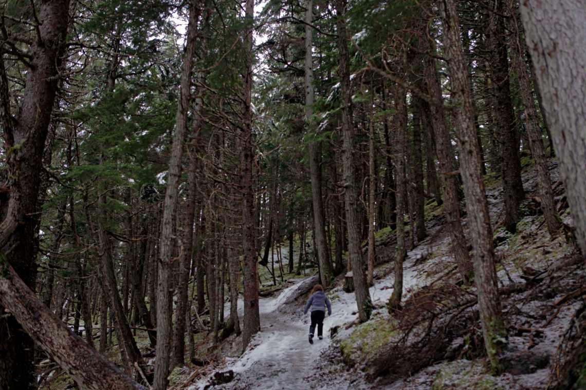 Hiking at the Alyeska Resort in Alaska