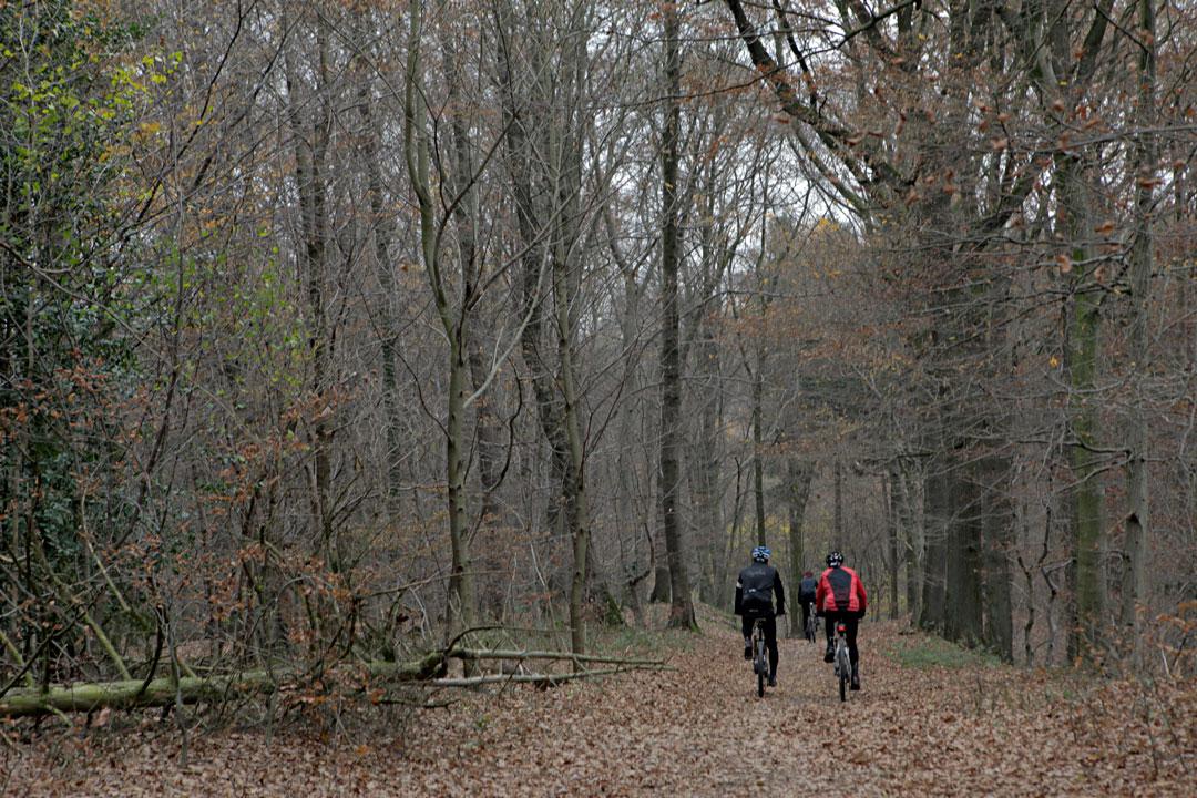 cycling-siebengebirge-germany