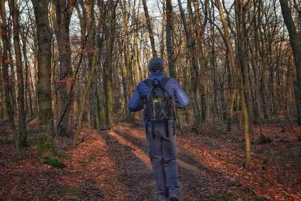Hiking in Germany the Drei Tuerme Weg