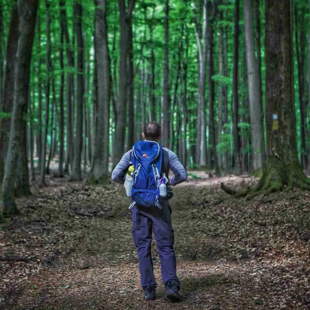 Hiking In Germany Neckarsteig