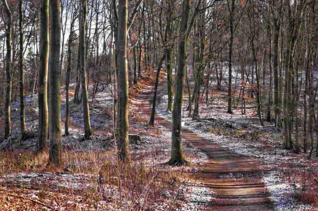 Hermannshoehen Hiking Trail