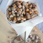 Captain Crunch Peanut Butter Puppy Chow With Salt And Wit