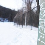 Winter Land Wander