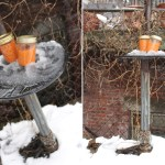 Juice of the Week: Snowy Orange