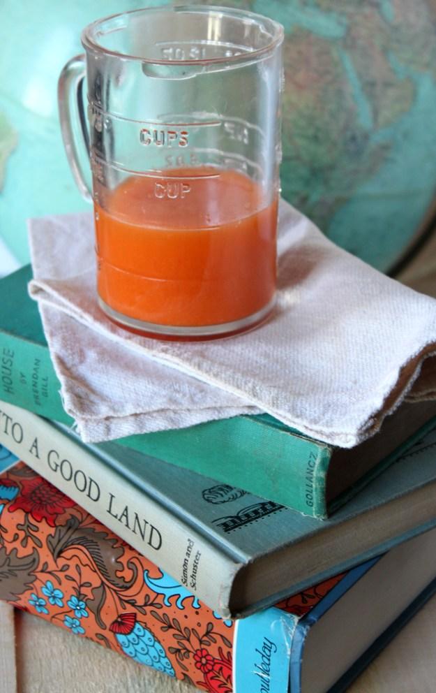 Orange Juice Globe