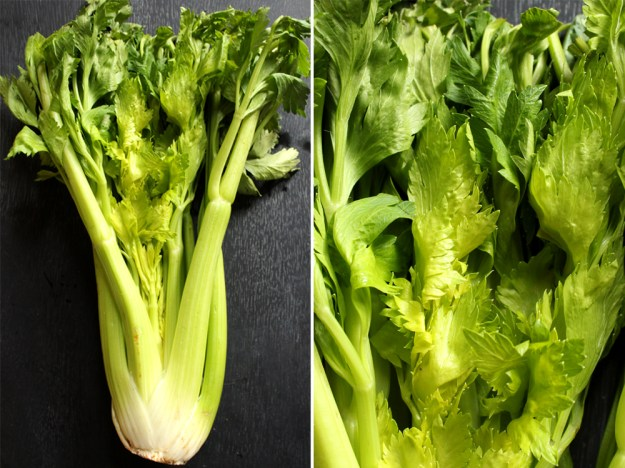 Lots of Celery