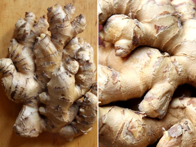 Ginger Textures