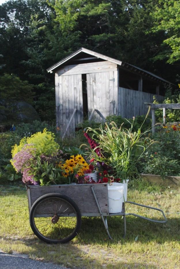 Maine Flower Cart
