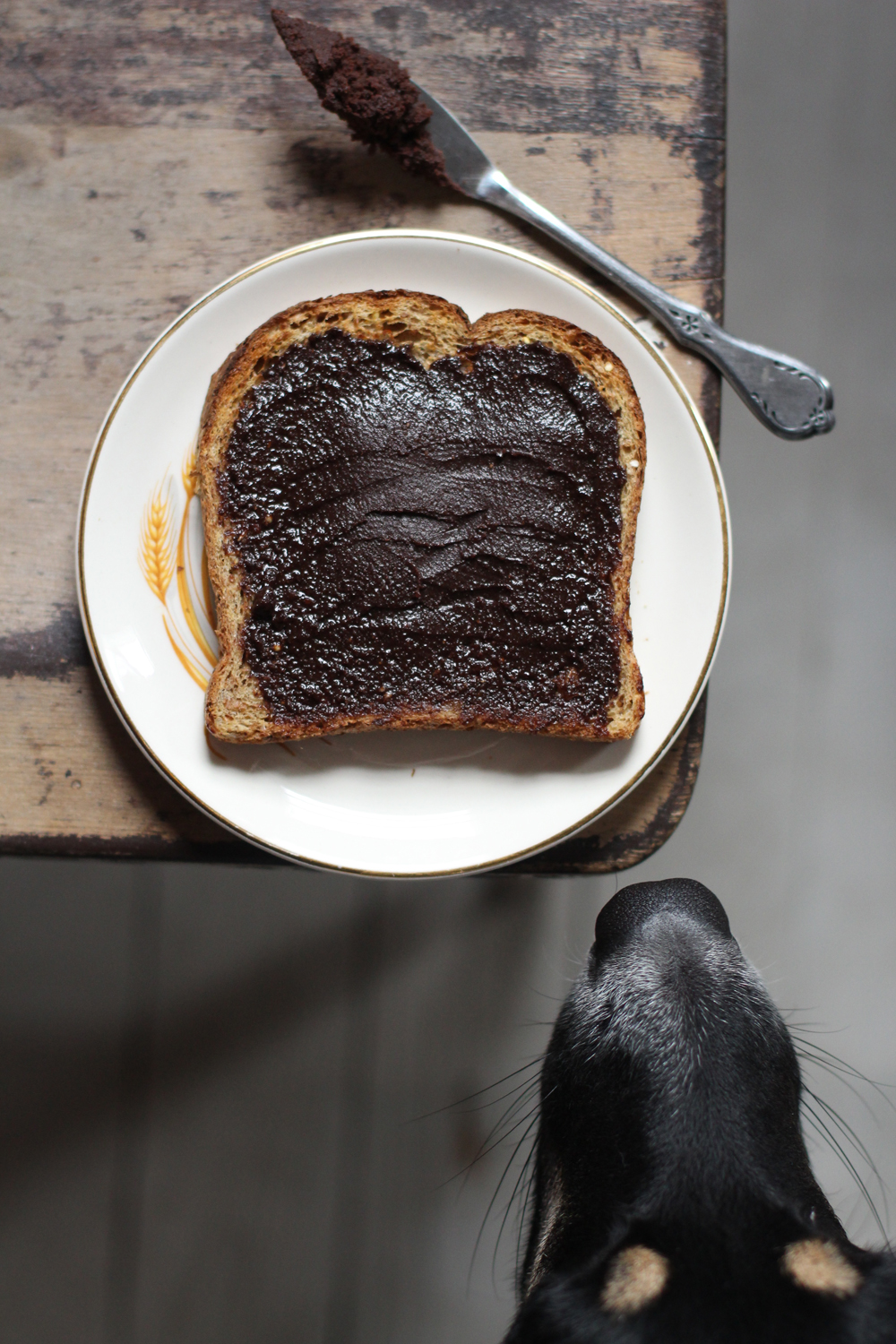 Homemade Nutella (The Case of the Curious Dog)
