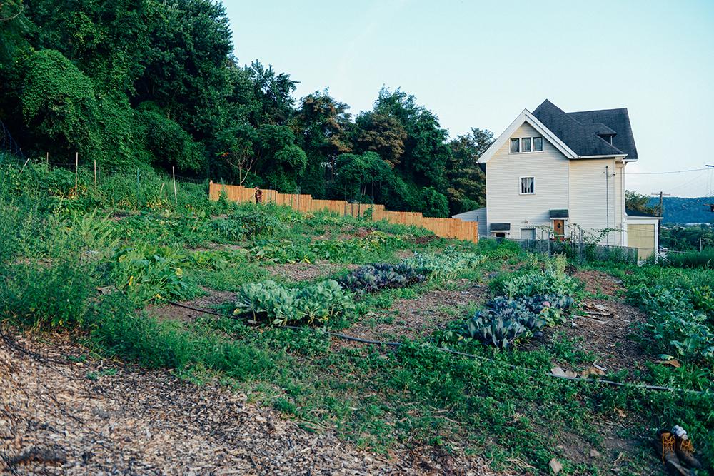 A Mint Themed Dinner on the Farm // www.WithTheGrains.com