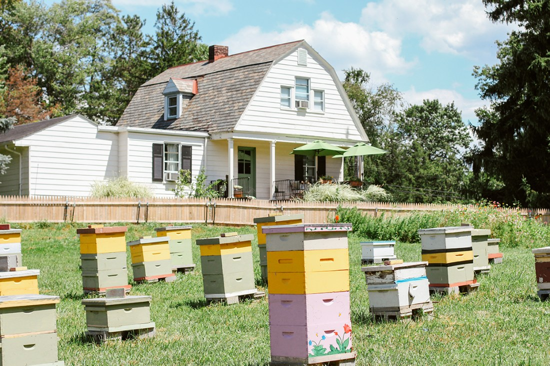 A Gathering of Beekeepers // www.WithTheGrains.com