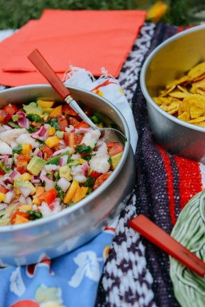 71-South-American-Inspired-Picnic-by-With-The-Grains-06