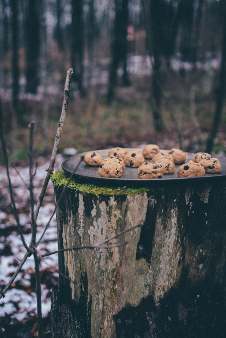 """No-Bake Cookie Bites or Cookie Dough """"Contraband"""" (Gluten-Free)"""