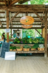 The Ithaca Farmer's Market // www.WithTheGrains.com