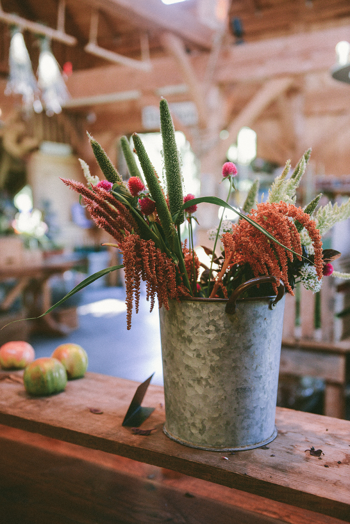 The Shop at Beach Plum Farms // www.WithTheGrains.com