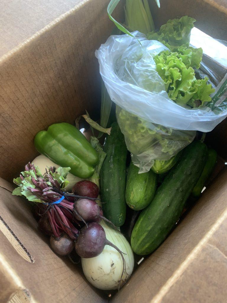 CSA Vegetables