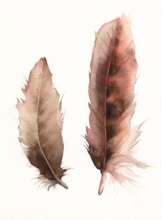 by amberalexander etsy: http://www.etsy.com/listing/62135692/feathers-no-2-feather-painting-nature?ref=usr_faveitems